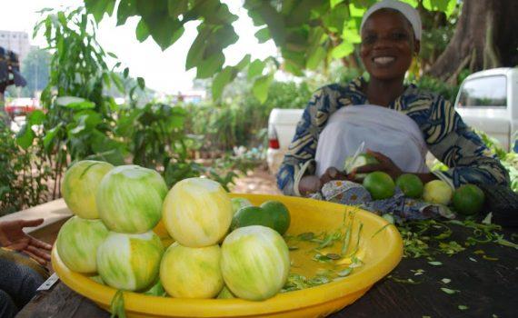 Mali shop fruit