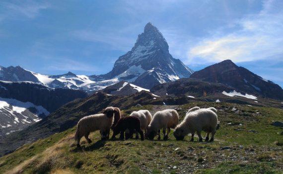 podejście pod Matterhorn